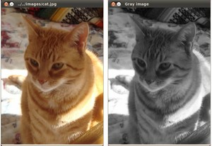 Load, Modify, and Save an Image — OpenCV 2 4 13 7 documentation